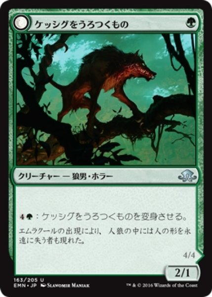 画像1: 【EMN】《ケッシグをうろつくもの/Kessig Prowler》《しなやかな捕食者/Sinuous Predator》【U】 (1)