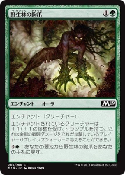 画像1: 【M19】《野生林の鉤爪/Talons of Wildwood》【C】 (1)