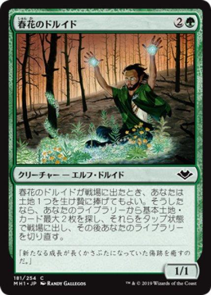 画像1: 【MH1】《春花のドルイド/Springbloom Druid》【C】 (1)