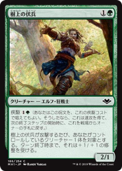 画像1: 【MH1】《樹上の伏兵/Treetop Ambusher》【C】 (1)